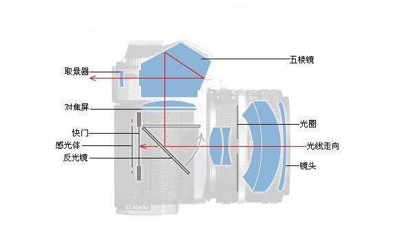图解单反相机取景光路变化之二图片